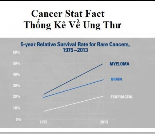 cancer stat fact - thong ke ve ung thu
