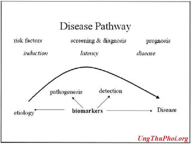 Biomarkers con duong benh tat va tac dong tiem nang cua dau an sinh hoc