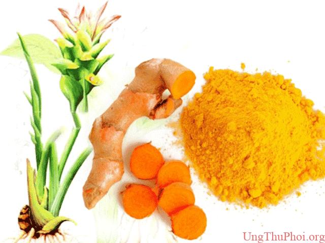 Thực phẩm vàng phòng chống ung thư bạn không nên bỏ qua - 1