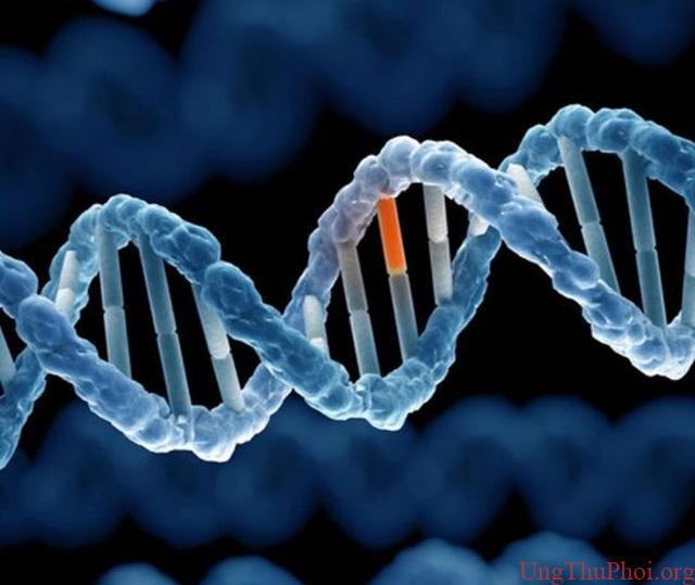 Bất hoạt gene - kỹ thuật mới giúp trị ung thư vú khó chữa - 1