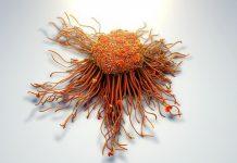 Xét nghiệm máu giúp tầm soát những loại ung thư nào? - 1