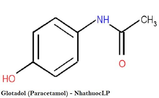 Glotadol (Paracetamol) - NhathuocLP