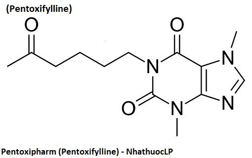 Pentoxipharm (Pentoxifylline) - NhathuocLP