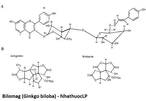 Bilomag (Ginkgo biloba) - NhathuocLP