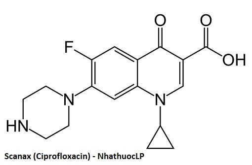 Scanax (Ciprofloxacin) - NhathuocLP