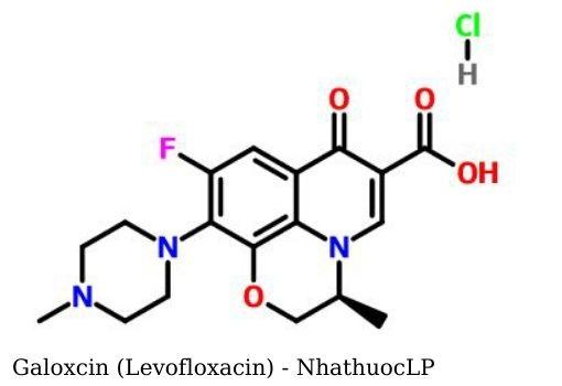 Galoxcin (Levofloxacin) - NhathuocLP